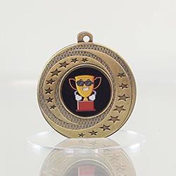 Wayfare Medal Character - Gold 50mm