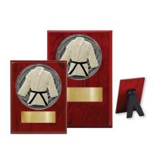 Martial Arts Wood Plaque - 2 Sizes