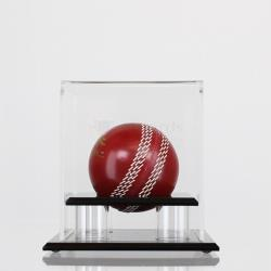 Ball Display Case - Cricket, Softball or Baseball
