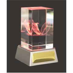 3D Aussie Rules Crystal & LED lights 110mm high