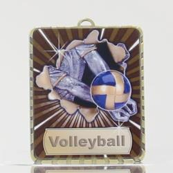 Lynx Medal Volleyball 75mm