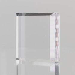 Executive Acrylic Paperweight