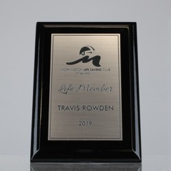 Super Gloss Black Plaque - Silver
