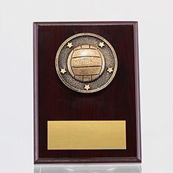 Spartan Netball Mahogany Plaque 150mm