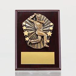 Cosmos Cricket Male Bowler Mahogany Plaque 150mm