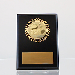 Table Tennis Plaque 150mm