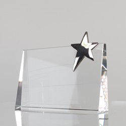 CIP Collection - Top Star Award Rectangle