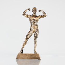 Body Builder Female 205mm
