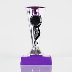Carnival Cup Purple With Purple Base 160mm