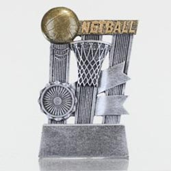 Netball Ribbon Series 110mm