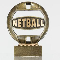 The Ball - Netball 110mm