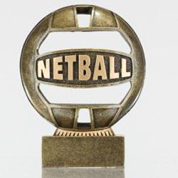 The Ball - Netball 110mm