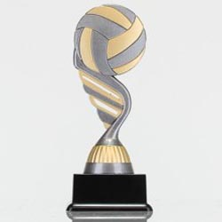 Silver Volleyball Theme on Black Base 160mm